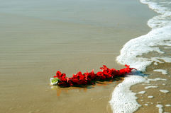 The Party's Over. A red flower Lei lies on the sand and is washed by the waves Stock Image