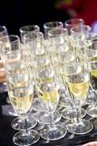 Party set of champagne flutes in a tray Royalty Free Stock Photos