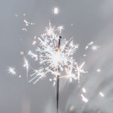 Party sparkler. Royalty Free Stock Photography