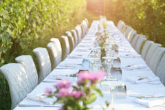 Party table set for a social event in the countryside Royalty Free Stock Image