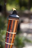 Party torch keeps bugs away Royalty Free Stock Photography