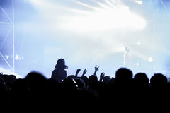 Partying crowd at a concert. Partying crowd at a live electronic dance music concert Royalty Free Stock Photo