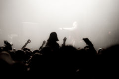 Partying crowd at a concert. Partying crowd at a live electronic dance music concert Royalty Free Stock Photography