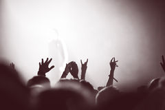 Partying crowd at a concert. Partying crowd at a live electronic dance music concert Royalty Free Stock Images