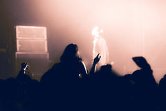 Partying crowd at a concert. Partying crowd at a live electronic dance music concert Royalty Free Stock Image