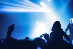 Partying crowd at a concert. Partying crowd at a live electronic dance music concert Stock Photos