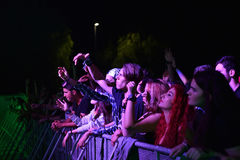 Partying crowd in the golden circle at a concert Stock Image