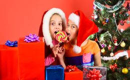 Partying and holiday concept. Children with surprised faces. Eat sweets on red background. Girls have winter holidays. Kids in Christmas hats with gift boxes royalty free stock image