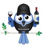 Partyjny Zwierzę Obrazy Stock