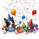Partyjny zwierzęcia domowego świętowanie ilustracji