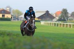 Partyspiel nella corsa di cavalli a Praga fotografia stock libera da diritti
