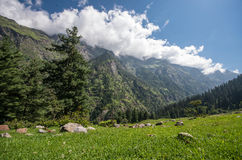 Parvati Vally, Himachal Pradesh - India Stock Photography