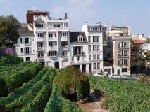 Paryż - ogródy dedykujący Auguste Renoir otaczają muzeum Montmartre zdjęcia royalty free