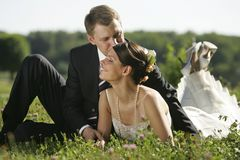 pary śródpolny całowania nowożeńcy Obrazy Royalty Free