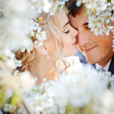 pary całowanie Obraz Royalty Free