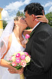 pary całowania ślub Obraz Stock