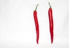 Pary czerwony chili na białym tle Fotografia Stock