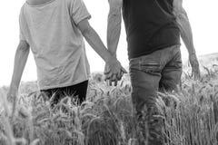 Pary mienia ręki w pszenicznym polu przy zmierzchem, czarny i biały, światło słoneczne skutek Obrazy Stock