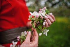 Pary przytulenie w miłości blisko kwitnąć drzewa uprawia ogródek Dziewczyna chwyta stanik Obrazy Stock