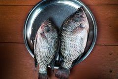 Pary Tilapia świeża ryba na talerzu Zdjęcie Stock