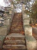 Paryscy kanałów kroki w jesieni Zdjęcie Royalty Free