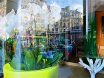Paryska ulica w nadokiennym reflexion obrazy stock