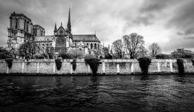 Paryski pejzaż miejski w czarny i biały Notre Damae gothic katedra Fotografia Stock