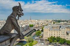 Paryski przegląd z wierzchu Notre Damae obraz stock