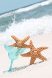 Paryting Starfish Royalty Free Stock Photo