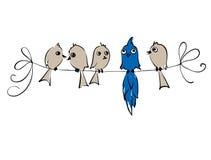 Pas comme chacun oiseaux Image libre de droits