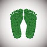 Pas d'herbe Image libre de droits