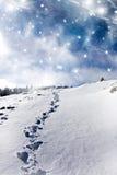 Pas dans la neige dans les montagnes Images libres de droits
