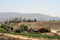 País de vino Imagen de archivo libre de regalías