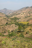 País do monte de Kalaw - Burma Fotografia de Stock