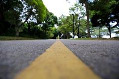 Pas ruchu w lesie Zdjęcie Stock