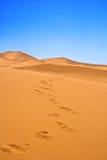 Pas sur des dunes de sable Photographie stock libre de droits