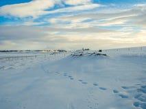 Pas sur la neige pendant l'hiver Images libres de droits