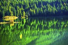 Pas Washington van Snoqualme van het wandelaars de Groene Gele Abstracte Gouden Meer Stock Afbeelding