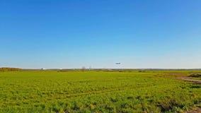 Pasażerski samolot ląduje przy lotniskowym Pulkovo zbiory wideo