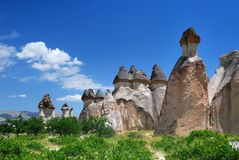 Pasa Baglari in Cappadocia. Pasabag Valley Is located 1 km off the Zelve turn on the Goreme - Avanos road. The tallest fairy chimneys, some multi-coned, attract stock photography