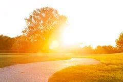 Pasa ruchu bieg przez parka pod zmierzchów sunbeams Zdjęcia Royalty Free