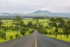 Pasa ruchu blacktop w lesie fotografia royalty free