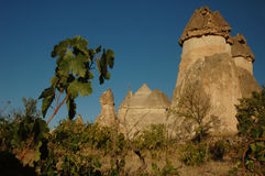 Pasabagi - Cappadocia Foto de Stock Royalty Free