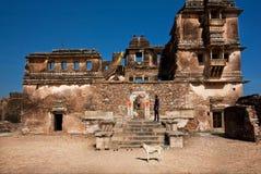 Pasado del perro de paria un palacio destruido Imagen de archivo