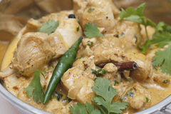 Pasanda chicken curry closeup Stock Image