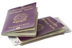 Pasaporte con los microchipes Fotos de archivo