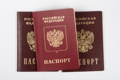 Pasaporte tres del ciudadano de la Federación Rusa en un fondo blanco Imágenes de archivo libres de regalías