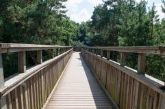 Pasarela de madera que cruza arriba para arriba sobre un bosque Imagen de archivo
