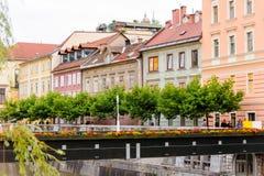 Pasarela de madera temporal de Ljubljana Fotografía de archivo libre de regalías
