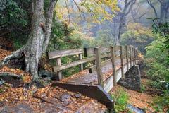 Pasarela peatonal Autumn Rain del NC Foto de archivo libre de regalías